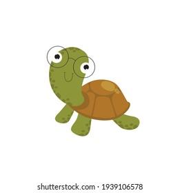 Funny vector turtle. Cartoon character. Little cartoon turtle