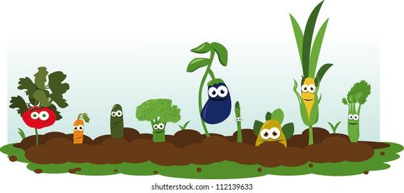 Funny Veggie Garden