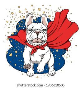 Funny white french bulldog in a superhero cape. Running dog.