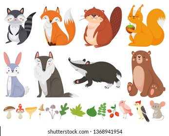 Funny wood animals. Wild forest animal, happy woodland fox and cute squirrel. Wood wild fauna wolf, bear and raccoon character, mushrooms and birds. Vector cartoon isolated icons illustration set