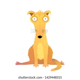 Funny yellow dog flat vector illustration. Cute domestic animal flat vector illustration. Adorable canine pet with big surprised eyes cartoon character. Fluffy mammal sitting in leg split pose.