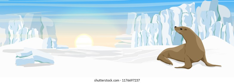 A fur seal on the snowy coast of the ocean. Glacier and shards of ice. Vector landscape of Alaska and other northern regions.