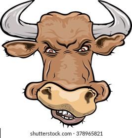 Furios bull head