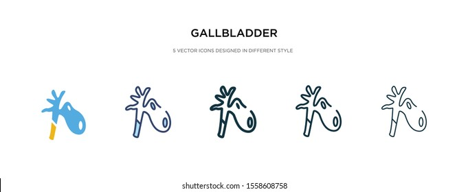 gallbladder icon in different style vector illustration. two colored and black gallbladder vector icons designed in filled, outline, line and stroke style can be used for web, mobile, ui