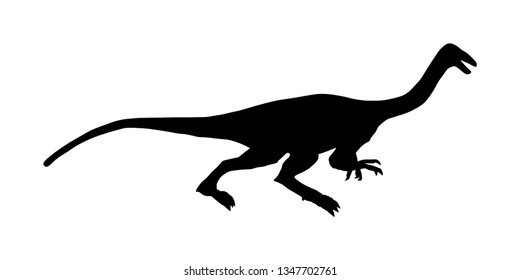 Gallimimus vector silhouette isolated on white background. Anchisaurus Dinosaurs symbol. Jurassic era. Dino sign. Coelophysis shadow. Big lizard dragon.