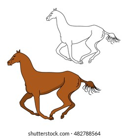The gallop of the horse outline and color pattern, vector illustration on white background