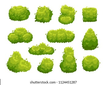 Garden bush. Green garden vegetation bushes icon. Cartoon shrubs for outdoor decorate landscape park hedge colorful vector isolated template sign set