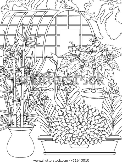 Garden Coloring Book Page Stock Vector (Royalty Free) 761643010