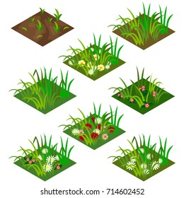 Garden or farm isometric tile set. Isolated tiles with grass and flowers - chamomiles and other. Vector illustration, can be used as a game asset to create landscape or garden scene.