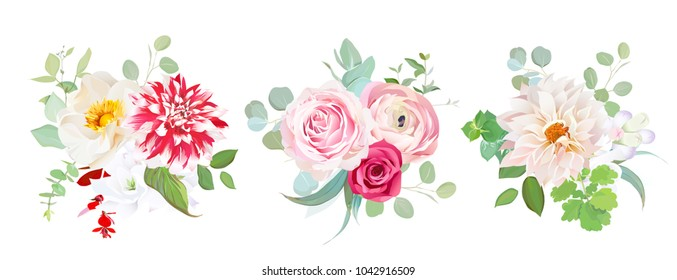 Garden flowers vector design bouquets.Red striped, creamy dahlia, pink ranunculus, rose flowers, freesia, eucalyptus greenery.Floral wedding borders composition. All elements are isolated and editable