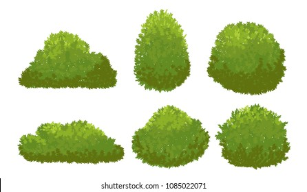 Garden green bushes. Cartoon shrub and bush vector set isolated on white background. Bush nature plant of collection illustration