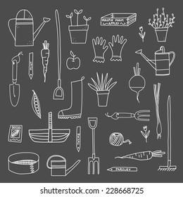 Garden hand drawn vector pattern