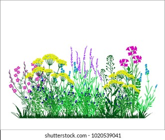 Garden landscapes, summer and spring flower bed. Vector illustrations