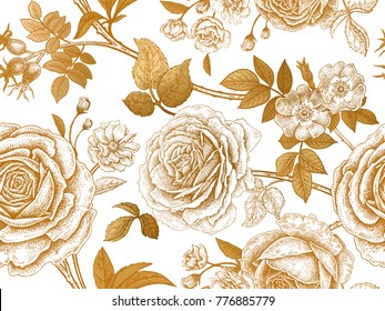 Garden roses and briar. Gold flowers, leaves, branches and berries on white background.  Floral vintage seamless pattern. Victorian style. Vector illustration. For design textiles, paper, wallpaper.