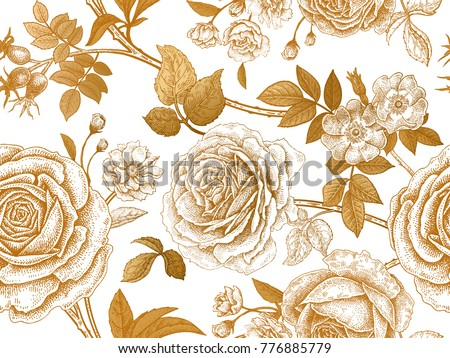 Garden roses briar gold flowers leaves stock vector royalty free garden roses and briar gold flowers leaves branches and berries on white background mightylinksfo