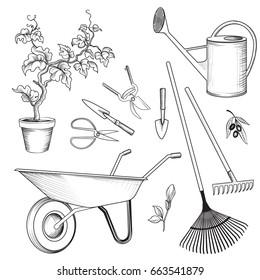 Garden tools set. Gardening plant, watering can, wheelbarrow, rake, shovel, spade, cart engraved signs
