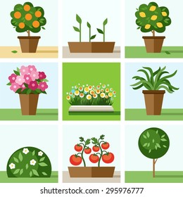 Garden, vegetable garden, flowers, trees, shrubs, flower beds, icons, colored. Colored flat icons, illustration with trees, shrubs, flowers, vegetable crops and seedlings.