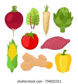 Garden vegetable set, radish, chard, artichoke, turmeric, tomato, bell pepper, sweet potato, corn. Made in cartoon flat style. Vector illustration