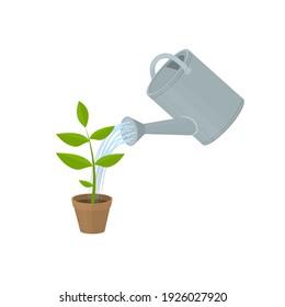 Garden watering can is watering a flower. Garden tools, vector illustration
