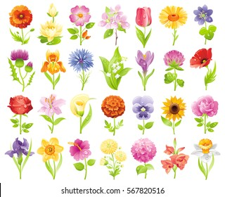 Garden wild flower icon set. Floral icons, summer spring flat symbol isolated white background. Easter Mothers day Birthday. Vector illustration. Rose lily daisy iris tulip poppy pansy crocus clover