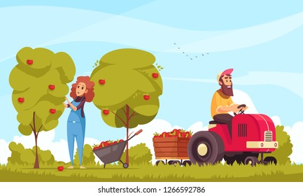 Gardening human characters with tractor during apples harvesting on blue sky background cartoon vector illustration