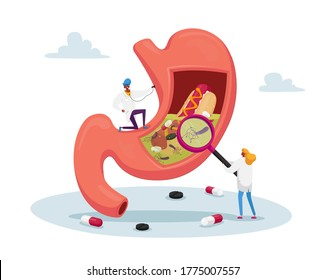 Gastroenterology Doctor Characters at Huge Stomach with Stethoscope and Magnifier. Appointment, Medic Study Stomachache Causes of Gastritis and Helicobacter Disease. Cartoon People Vector Illustration