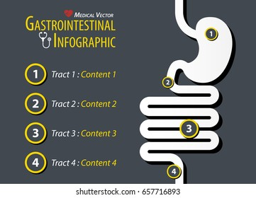 Gastrointestinal Infographic . Flat design .