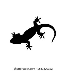 Gecko silhouette, animal vector illustrator.