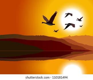 Geese flying through mountain range at sunrise/sunset
