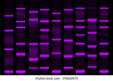 Gel electrophoresis separation electrophoretogram result vector illustration