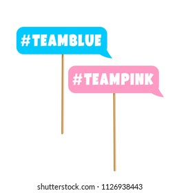 Gender reveal party photo booth prop on sticks. Blue and pink team signs.