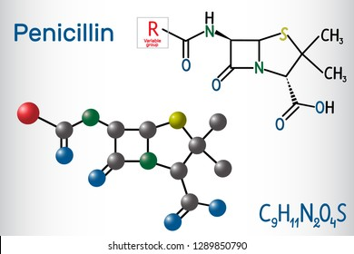 General formula of penicillin (PCN) molecule. It is a group of antibiotics. Structural chemical formula and molecule model. Vector illustration