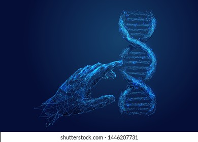 Genetic analysis and research low poly wireframe illustration. Polygonal DNA chromosome analyzing mesh art. 3D scientist hand touching double helix molecule model. Molecular biology science