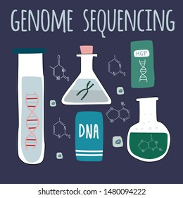 Genetic engineering and genome sequencing set of isolated elements: helix DNA,chromosome, test tubes, nucleotides. Vector illustration in cartoon style.