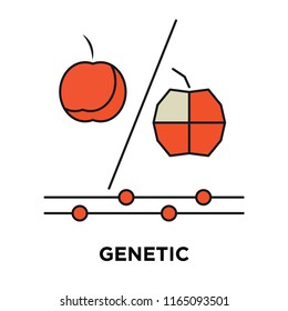 Genetic modification icon vector isolated on white background, Genetic modification transparent sign , technology symbols