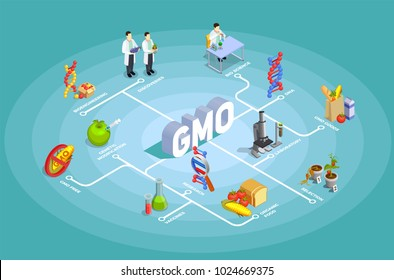 Genetically modified organisms isometric flowchart on turquoise background with dna, research, organic food, gmo goods vector illustration
