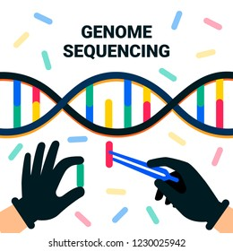 genome sequencing concept. Nanotechnology and biochemistry laboratory. The hands of a scientist working with a dna helix, genome or gene structure. Human genome project. Flat style vector illustration