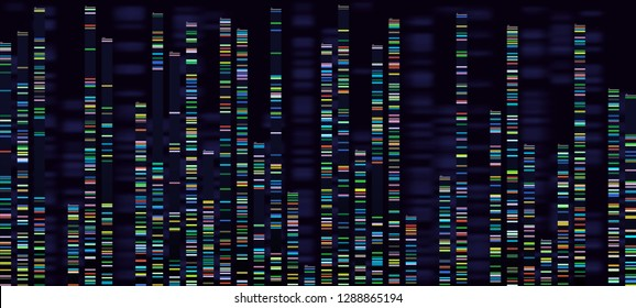 Genomic analysis visualization. Dna genomes sequencing, deoxyribonucleic acid genetic map and genome sequence analyse. Bioinformatics forensics data or dna radiographic testing vector concept