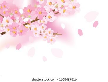 The gentle flower danced softly