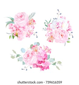 Gentle mix of pink bouquets vector design set. Rose, alstroemeria lily, white peony, hydrangea, eucalyptus, plants and herbs. Wedding bunch of flowers. All elements are isolated and editable.