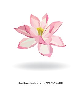 Geometric Floral Water Lily Lotus Elements for design, EPS10 Vector background