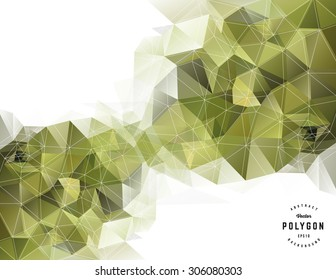 Geometric polygon background over white
