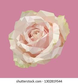 geometric polygonal light pink rose, isolated polygon vector flower illustration