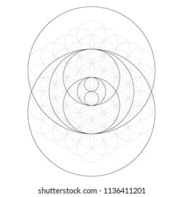 Geometrical figure. Sacred Geometry Torus Yantra or Hypnotic Eye vector illustration