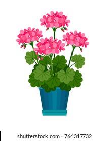 Geranium houseplant in flower pot. Vector icon on white background