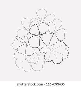 Geranium icon line element. Vector illustration of geranium icon line isolated on clean background for your web mobile app logo design.