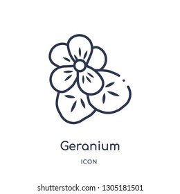 geranium icon from nature outline collection. Thin line geranium icon isolated on white background.