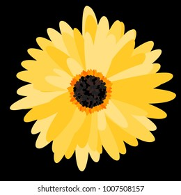 Gerbera Daisy. Vector Flower for Tablecloth, Paper, Tile. Vector illustration. Beautiful Bright Gerbera. Daisies. Floral Background. Vector Illustration. Floral. Gerbera Daisy for the Pattern.