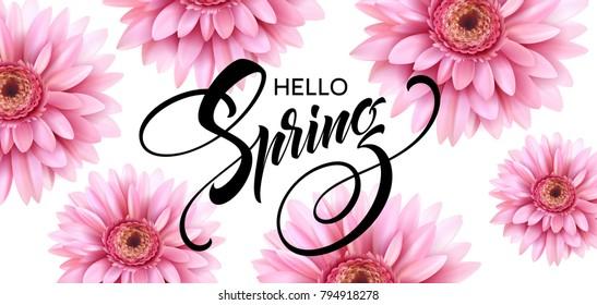 Gerbera Flower Background and Hello Spring Lettering. Vector Illustration