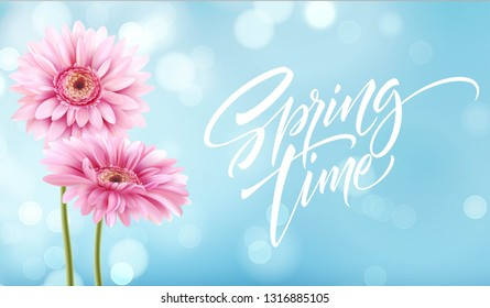 Gerbera Flower Background and Spring time Lettering. Vector Illustration EPS10